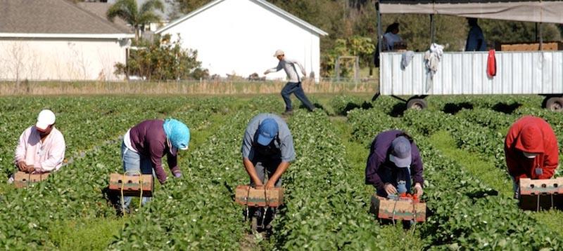 Per sindacati vanno salvaguardati tutti i lavoratori da ...